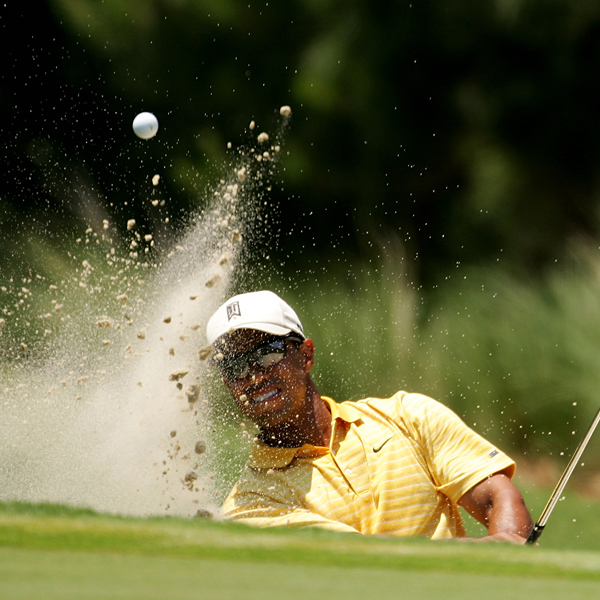 may11_tigerbunker_600x600.jpg