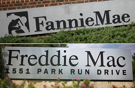 Fannie mae stock options
