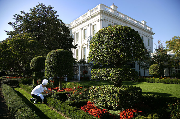 White House Executive Sous Chef Tommy Kurpradit White House in preparation for President Bush's social dinner next week with France President Nicolas Sarkozy.