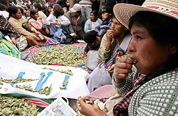 Bolivians celebrate the 'acullicu' day or 'coca chewing day.'