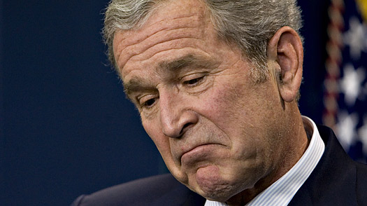 gw_bush_disappoint_0112.jpg