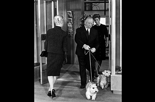 At the beginning of the Alfred Hitchcock film The Birds, Hitchcock is seen walking his two Sealyham Terriers
