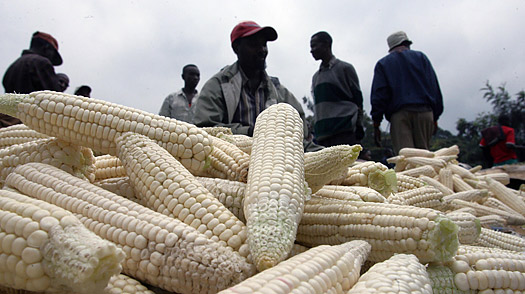 Kenyan market vendors selling maize in Kagemi.