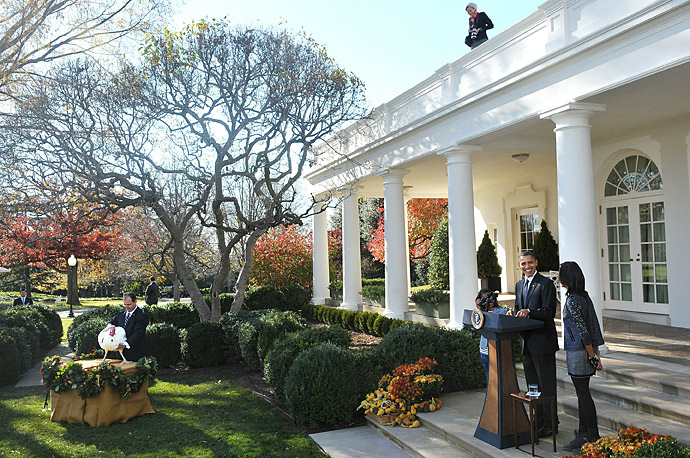 President Barack Obama speaks during the annual pardon of the National Thanksgiving Turkey November 24, 2010 in the Rose Garden.