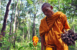 The monks of Sorng Rukavorn forest in Oddar Meanchey province, Cambodia