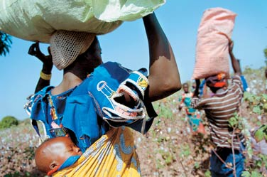 Cotton workers in Burkina Faso