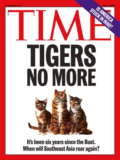 A ggroup of kittens with tiger stripes, representing Asia's timid economies