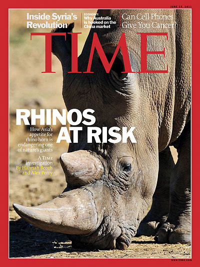 How Asia's appetite for rhino horn is endangering one of nature's giants