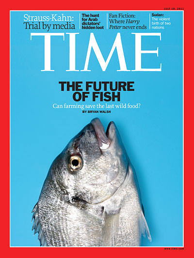 Blue cover with a photo of a sea bream fish