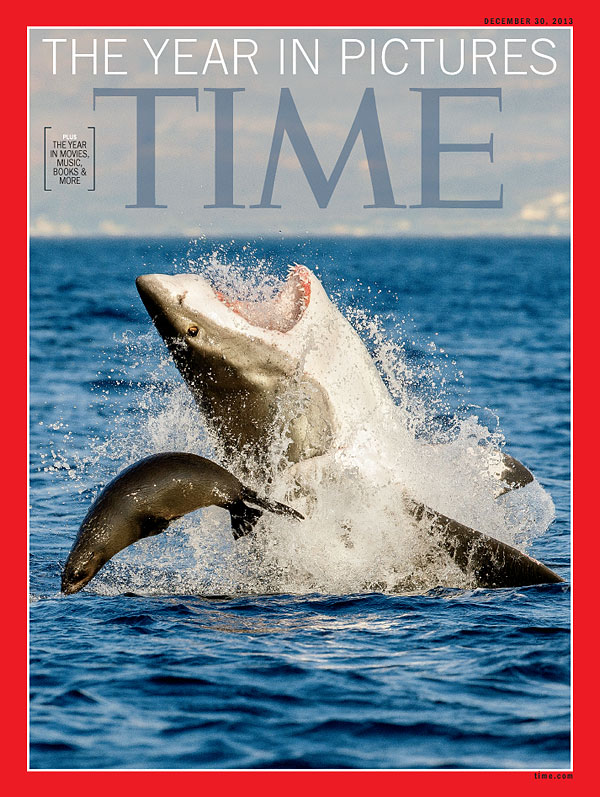 a photograph of a seal narrowly evading being crushed by the jaws of a great white shark