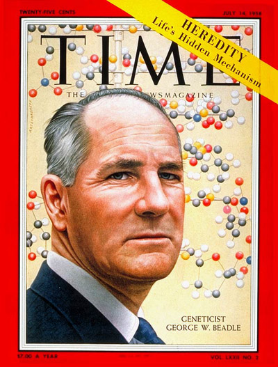 TIME Magazine Cover: George Beadie -- July 14, 1958