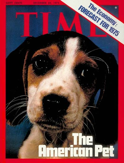 This young beagle is the seventh animal to appear on a TIME cover without being accompanied by its owner.