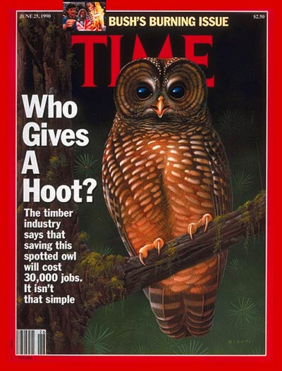 TIME Magazine Cover: The Spotted Owl -- June 25, 1990