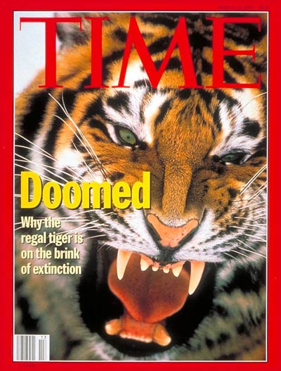 TIME Magazine Cover: Endangered Tigers -- Mar. 28, 1994