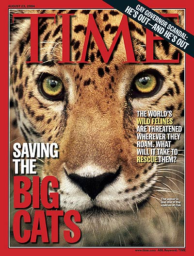TIME Magazine Cover: Saving the Big Cats -- Aug. 23, 2004