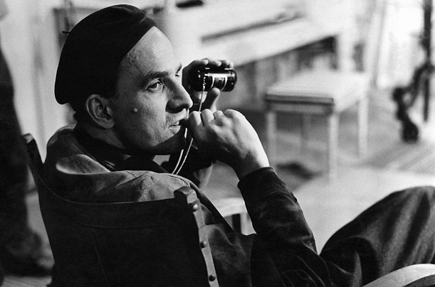Image result for bergman