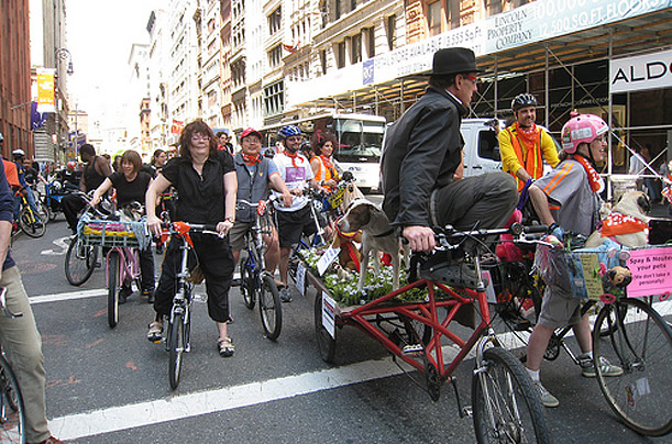 Bicycles Transportation Bike Month