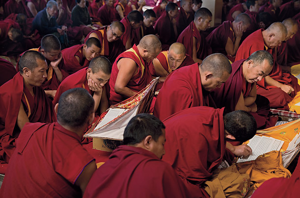 the role and teachings of the dalai lama philosophy essay Teachings what is the mind by his holiness the dalai lama  here his holiness the dalai lama explains the buddhist concept of mind to the participants of a mind.