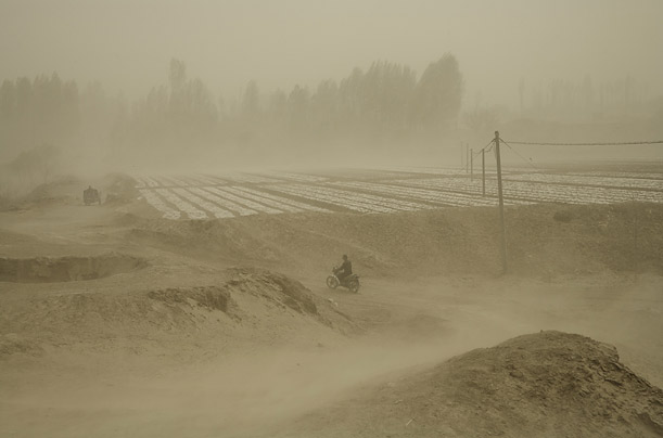 A farmer in the once fertile Hexi Valley fights off the unrelenting sands by stretching plastic film over his seedlings. The depression in the foreground of the photo was once a reservoir.