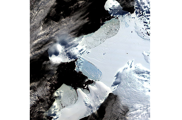 British Antarctic Survey scientist David Vaughn predicted that the northern part of the Wilkins ice shelf would likely collapse 15 years from now.