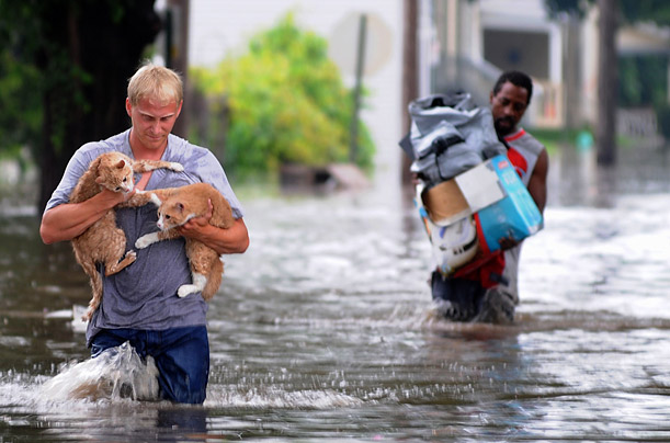 Brandon Smith carries his two cats, Fry and Bender, to dry land from their flooded and evacuated home.