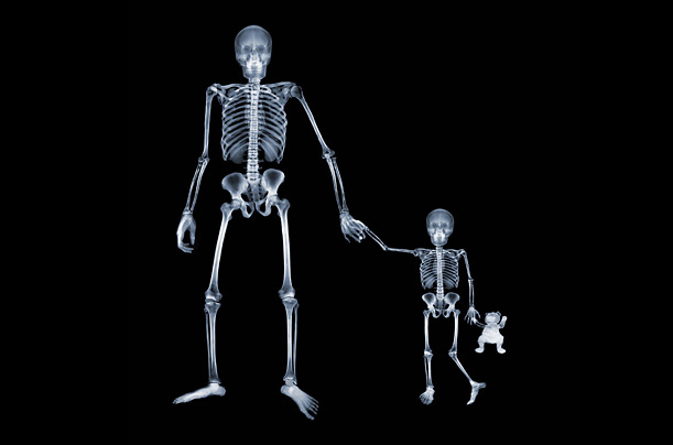 http://img.timeinc.net/time/photoessays/2008/xray/parent_xray.jpg
