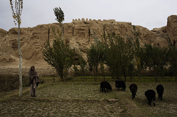Afghanistan, Archaeology