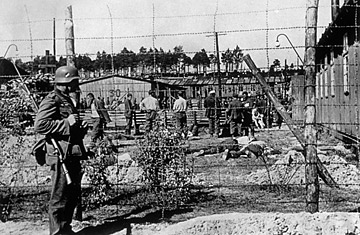 nazi concentration camps essays