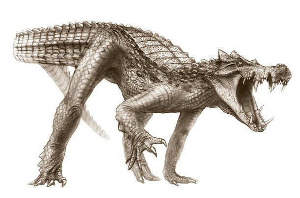 Prehistoric Crocodile