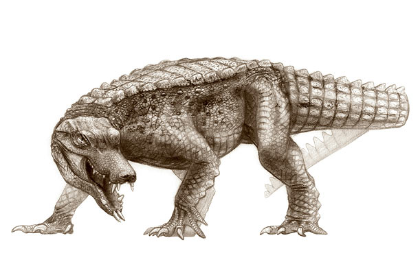 RatCroc