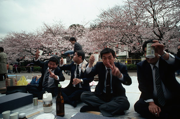 Businessmen share drinks at a picnic under the trees in Tokyo during a cherry blossom festival in April 1989