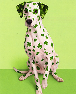 St patricks day cards 10 things you didnt know about st dek m4hsunfo