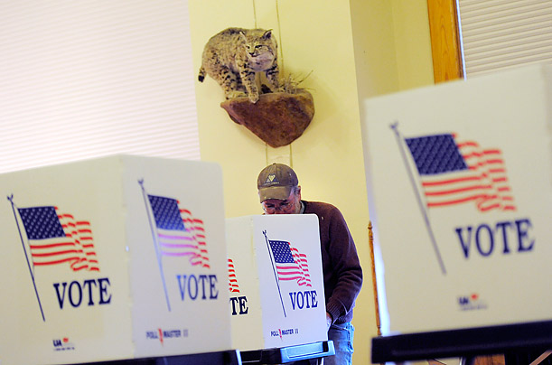 America Votes in Midterm Elections