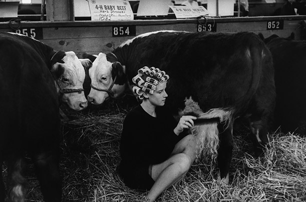 A beauty contest for cattle at the Iowa State Fair in Des Moines, 1965. Impressed by his photographs in Life(itals), Robert Capa invited the young photographer to join the Magnum Photography Cooperative in 1951.