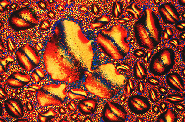 What Whiskey Looks like Under a Microscope