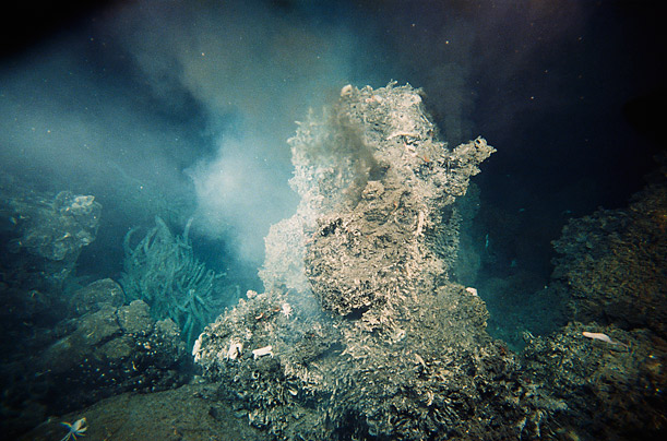 east pacific rise hydrothermal vents