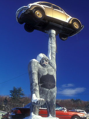 essay on roadside attractions