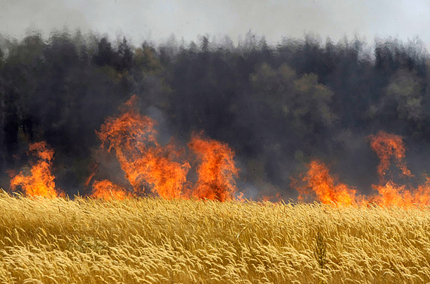 The alarming number of fires was triggered in part by a massive heat wave and severe drought.