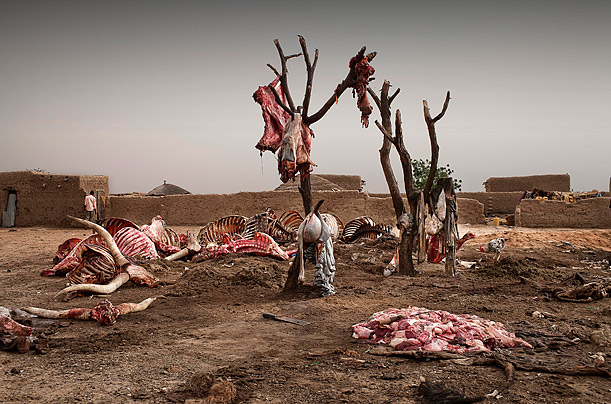June 27, 2010. Entrails of dead animals hang in Gadabedji, Niger, where meat traders buy the animals' dead bodies to cook on the spot and send to Nigeria.