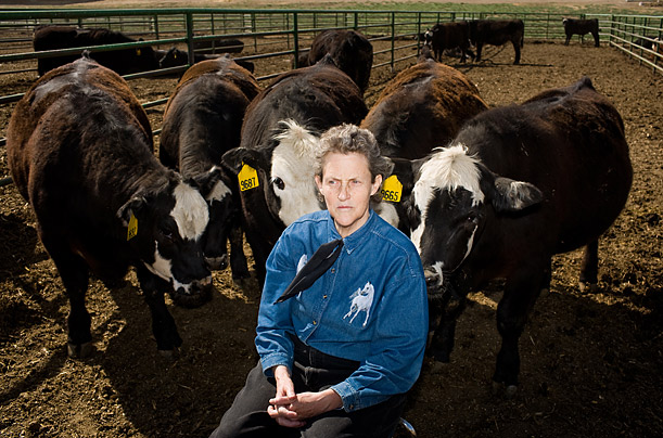 The Perspectives of Temple Grandin
