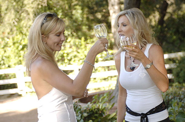 Also known as The Hills for Your Mom, Real Housewives of Orange County, like MTV�s serial, gave us the upscale reality soap, detailing its subjects' lives, loves and discretionary purchases.