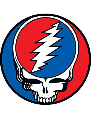 The Grateful Dead Skull Top 10 Skulls Time