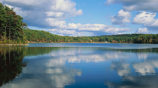 essays on walden pond Walden is one of the most famous works in american literature in this nonfiction work, henry david thoreau offers his perception of his time at walden pond.