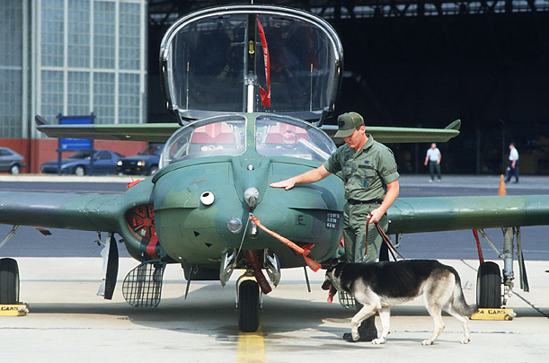 The Dogs of War: Canines in Combat