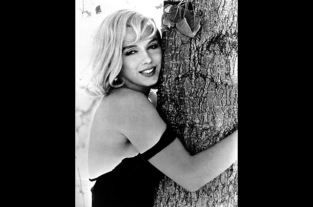 essays on marilyn monroes death 10062015 are these real marilyn monroe funeral photos,  after marilyn's death a number of photos were leaked, including crime scene photos,.