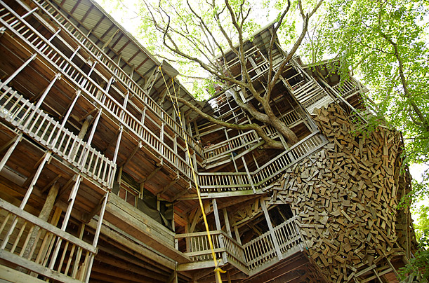massive tree house may soon be named the worlds largest