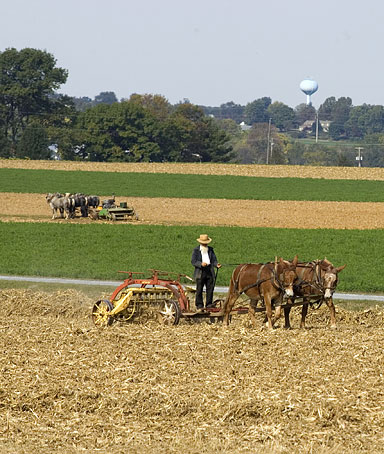 An Amish Farmer tending his land. The farmlands of the Pennsylvania Dutch Country are among the most productive in the nation.