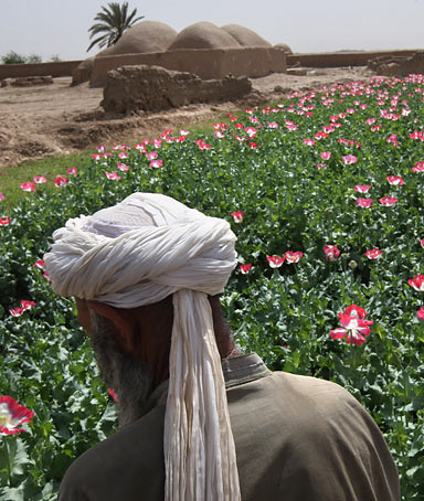 Why are the Americans in our land? What can I say, we are powerless. Khan Mohamad, an Afghan farmer who, along with many Afghans,