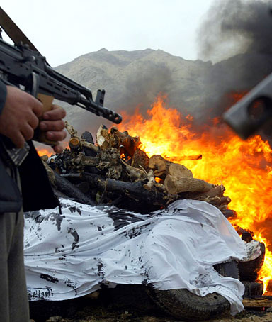 Afghan policemen stand guard as illegal drugs (opium or raw heroine) are destroyed in Herat, Afghanistan on 21 February 2010