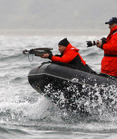 Russia's Prime Minister Vladimir Putin (L) fires darts with a crossbow at an endangered grey whale from a motorboat in Olga Bay in the Sea of Japan, August 25, 2010.